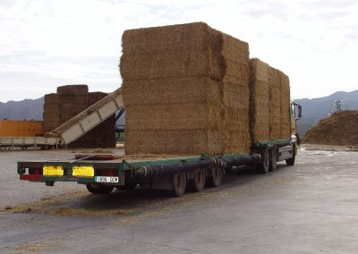 Reception of raw material – straw